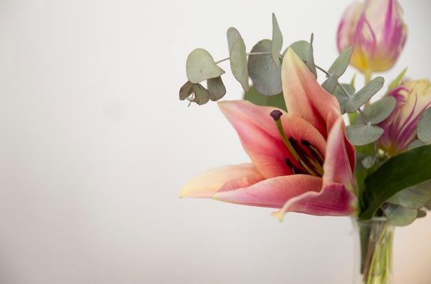 Gros plan, vase, à, lis; feuilles d'eucalyptus populus et tulipe sur fond blanc Photo gratuit