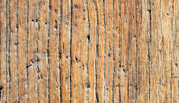 Gros plan, vieux, boisé, porte, bois rouillé et patiné. Photo Premium