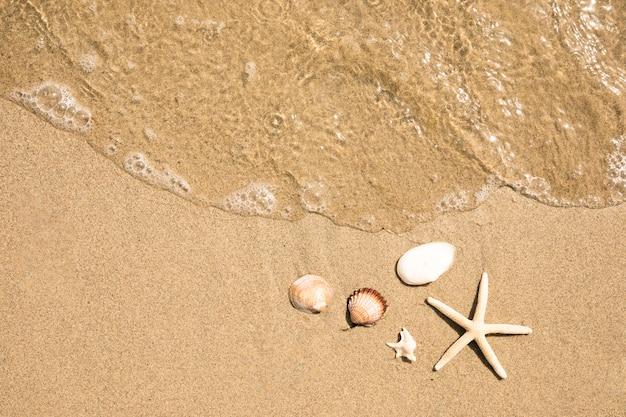 Gros plan, vue dessus, de, eau, sur, plage sablonneuse tropicale Photo gratuit
