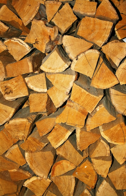 Gros tas de bois de chauffage Photo Premium