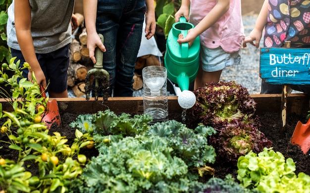 Groupe d'enfants de maternelle apprenant le jardinage en plein air Photo Premium