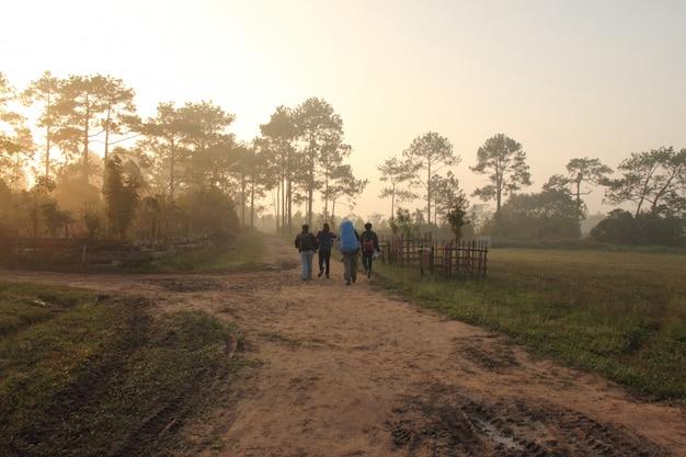 Groupe de touristes marchant sur le sentier de randonnée en forêt Photo Premium