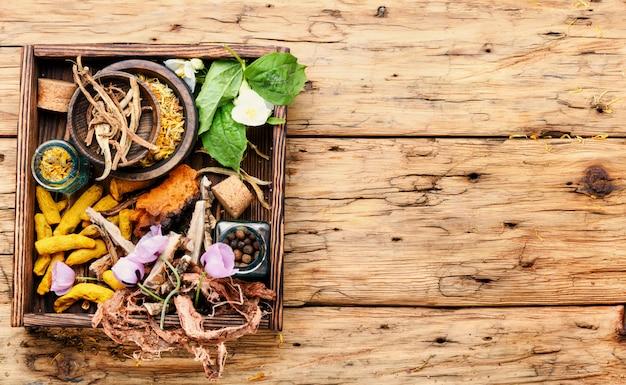 Guérison des herbes dans une boîte en bois Photo Premium