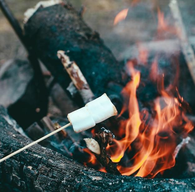Guimauve sur un bâton au-dessus du feu cuire des guimauves en feu Photo Premium