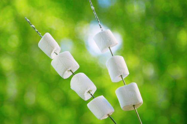 Guimauves rondes blanches sur des bâtons à rôtir au feu Photo Premium