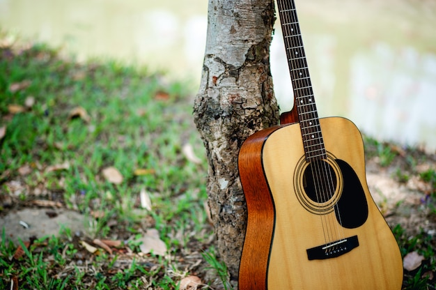 Guitare acoustique Photo Premium