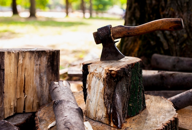 Hache coincée dans une bûche de bois Photo gratuit