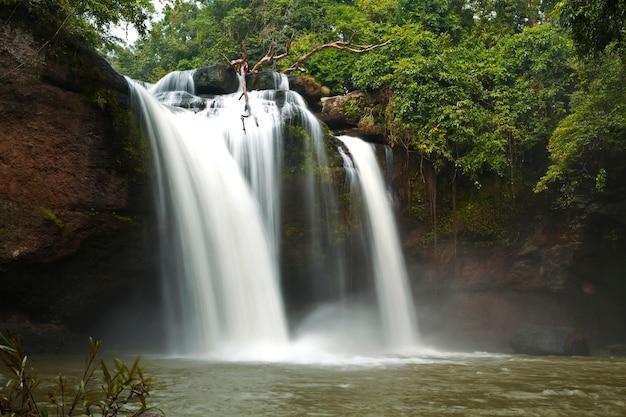 Haewsuwat chute d'eau dans les parcs nationaux, khao yai, nakhon ratchasima, thaïlande Photo Premium