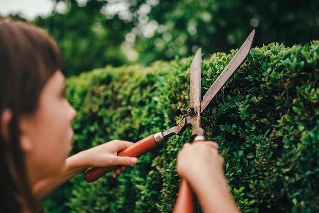 Haie d'élagage fille avec cisailles à main Photo Premium