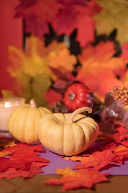 Halloween Fond Automne Feuilles Et Citrouille Jour De La Célébration De La Mort Photo Premium