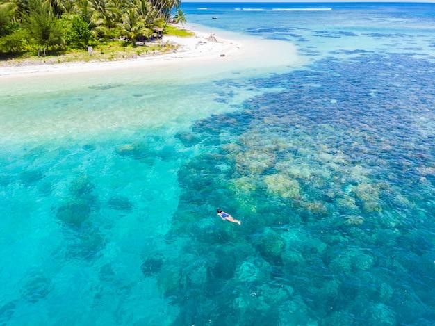 Haut aérien vers le bas de gens plongée en apnée sur la barrière de corail des caraïbes Photo Premium