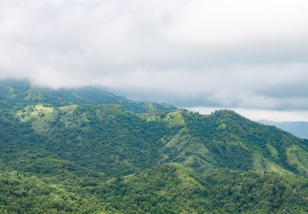 Haute montagne verte avec brume Photo Premium