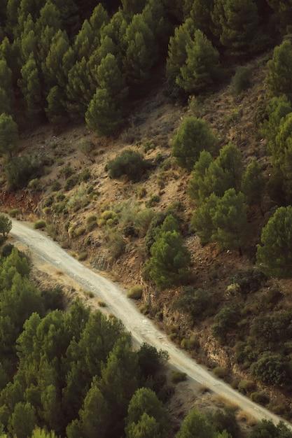 Haute vue d'une route entre paysage naturel Photo gratuit