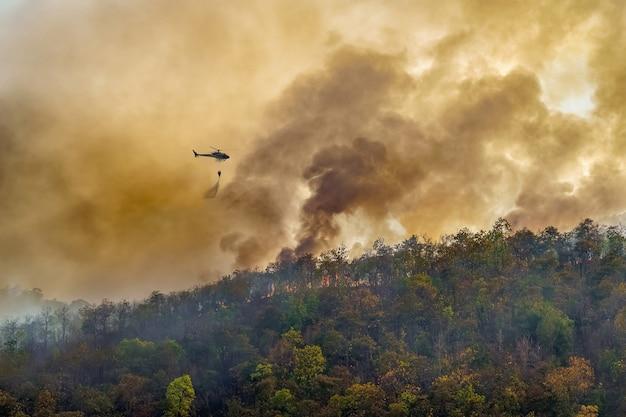 Hélicoptère De Lutte Contre Les Incendies Laissant Tomber De L'eau Sur Un Feu De Forêt Photo Premium