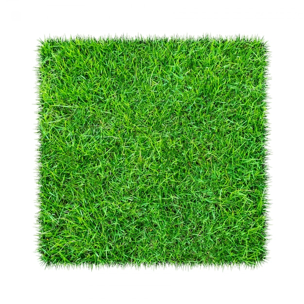 L'herbe verte. fond de texture naturelle. herbe verte printanière. Photo Premium