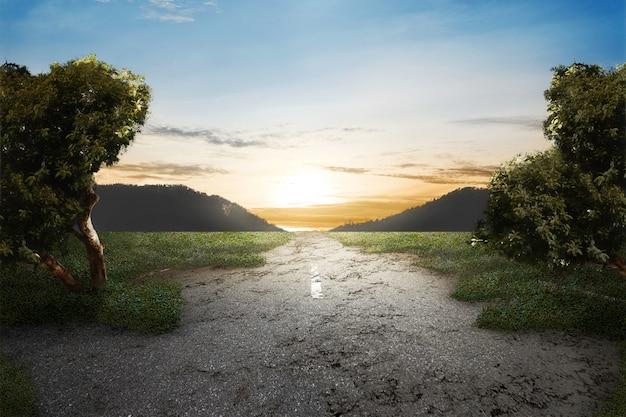 Herbe Verte Sur La Route Abandonnée Photo Premium