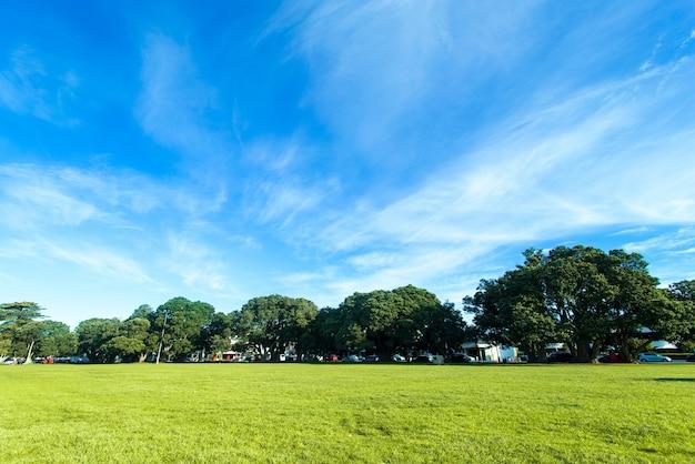 Herbe verte sur un terrain de golf Photo gratuit