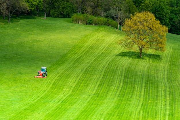 Herbe verte sur un terrain de golf Photo Premium