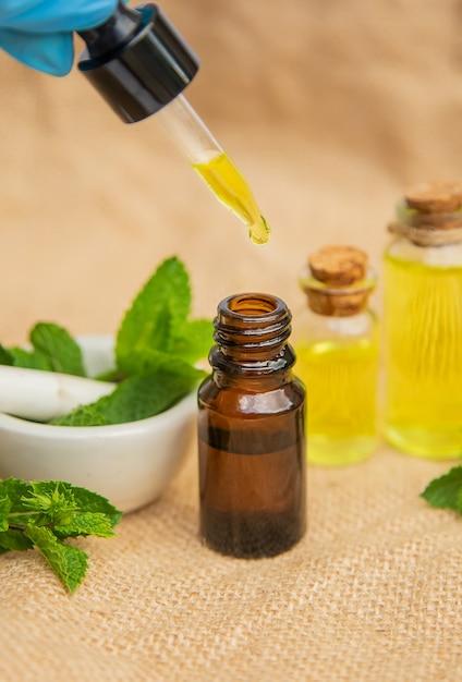 Herbes medicinales. médecine et santé. Photo Premium