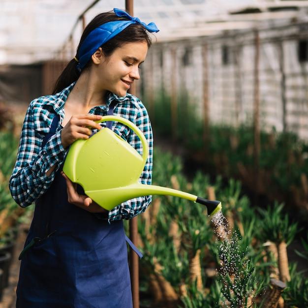 Heureux jardinier femelle arroser les plantes en serre Photo gratuit