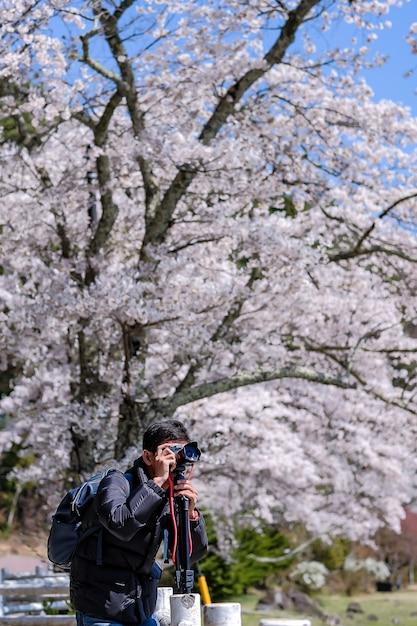 Heureux jeune homme voyageant prendre une photo avec une belle fleur de cerisier rose Photo Premium