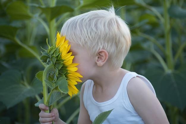 Heureux petit garçon blond reniflant une fleur de tournesol sur un champ vert. fermer. Photo Premium