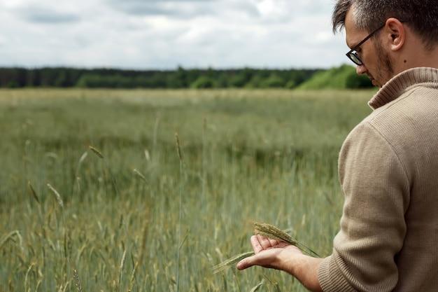 Un homme agriculteur est debout dans son champ, tenant une épine de seigle dans sa main Photo Premium