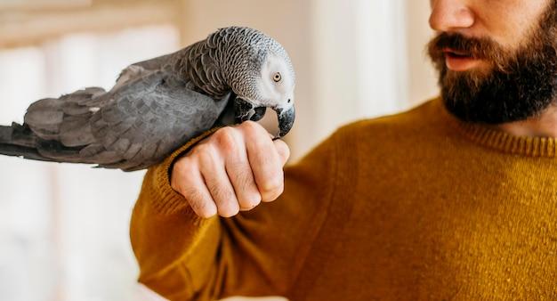 Homme Barbu Caresser Oiseau Mignon Photo gratuit