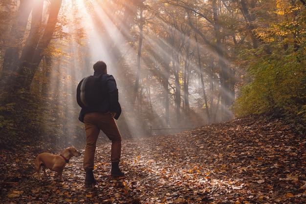 Homme et chien dans la forêt Photo Premium