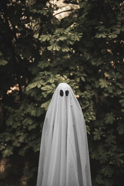 Homme en costume de fantôme debout près de la brousse Photo gratuit