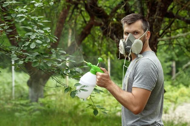 L'homme dans le respirateur arrose les plantes Photo Premium