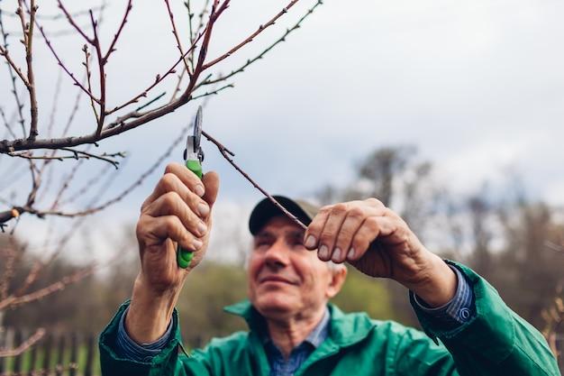 Homme élagage arbre avec une tondeuse. un agriculteur coupe des branches dans un jardin d'automne avec un sécateur ou un sécateur Photo Premium