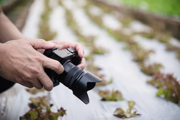 Homme de ferme travaillant dans son jardin de laitue biologique Photo gratuit