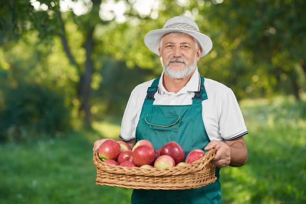 Homme montrant la récolte, tenant un panier rempli de pommes rouges délicieuses. Photo Premium