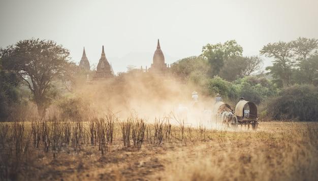 Homme rural birman, conduite de chariot en bois avec du foin sur route poussiéreuse dessinée Photo Premium