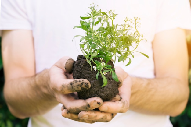 Homme sans visage avec tas de terre et de plantes Photo gratuit