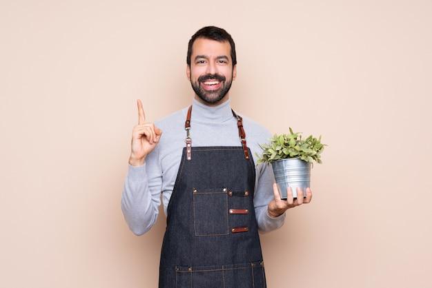 Homme tenant une plante sur un mur isolé pointant vers le haut une excellente idée Photo Premium
