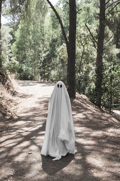 Homme en vêtements fantômes debout sur une passerelle en forêt Photo gratuit
