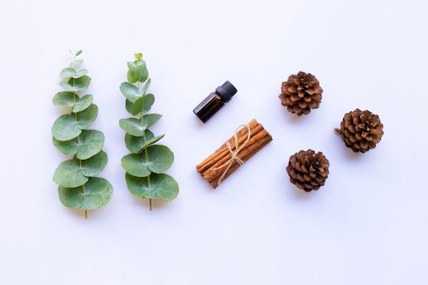 Huile essentielle avec des branches d'eucalyptus, des ciseaux vintage, du bâton de cannelle et des pommes de pin sur blanc Photo Premium