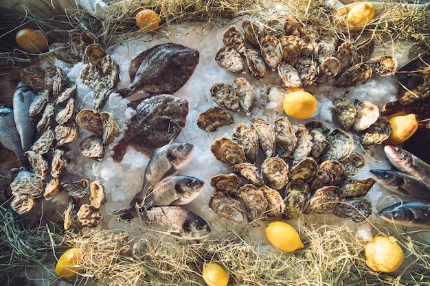 Huîtres et autres fruits de mer sur glace. Photo Premium