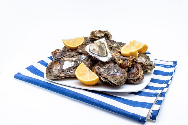 Huîtres dans une assiette Photo Premium