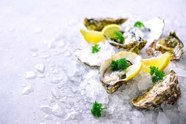 Huîtres fraîches ouvertes, citron, herbes, glace sur béton gris pierre. Photo Premium