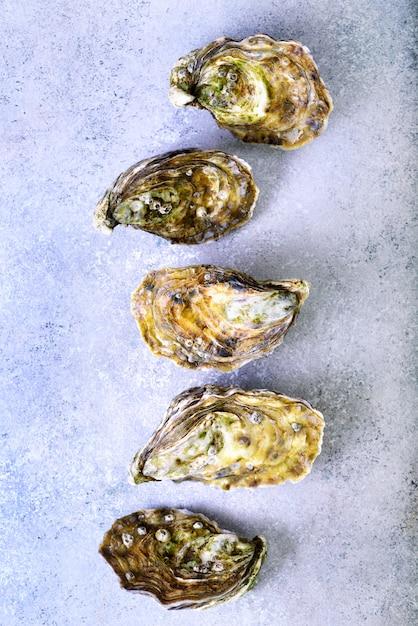 Huîtres fraîches sur pierre grise en béton. vue de dessus, espace de copie Photo Premium