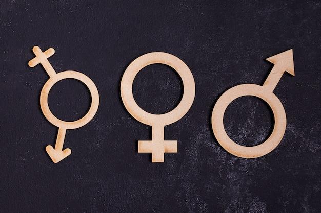 Icône De Concept D'égalité Entre Les Sexes Photo gratuit