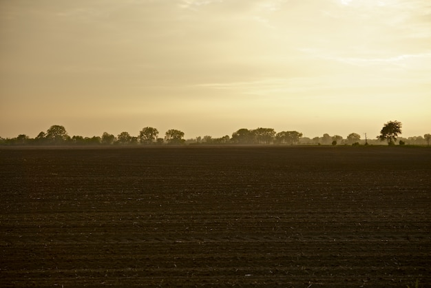 Illinois farmlands Photo gratuit