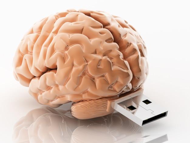 Illustration 3d cerveau en forme usb Photo Premium