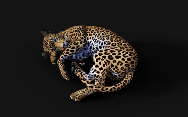Illustration 3d de léopard isolé sur fond noir Photo Premium
