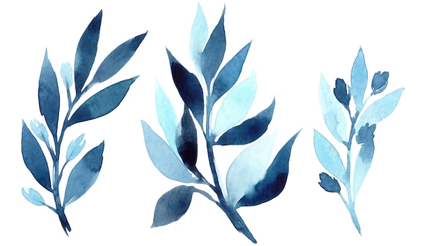 Illustration Aquarelle Dessinée à La Main De Branche Bleue Abstraite. éléments Pour La Conception D'invitations, D'affiches De Cinéma, De Tissus Et D'autres Objets Photo Premium