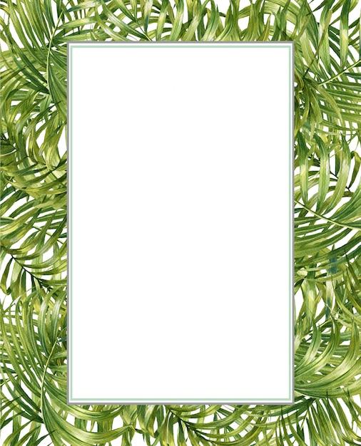 Illustration aquarelle peinture de feuilles de bambou, sur fond blanc Photo Premium