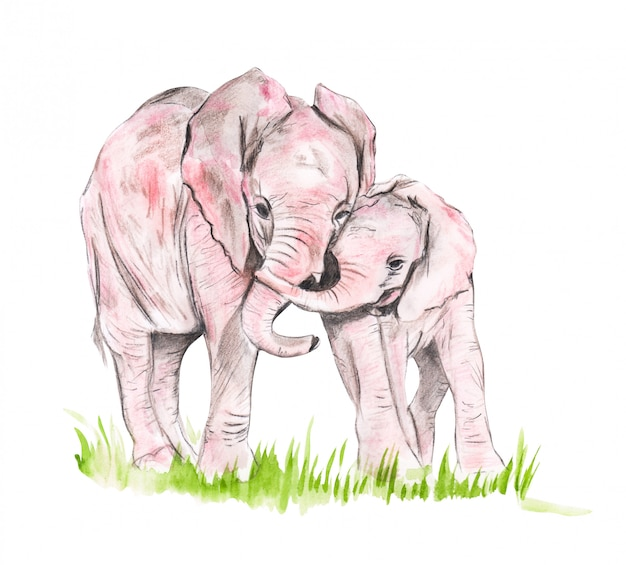 Illustration d'une famille d'aquarelles d'éléphants Photo Premium